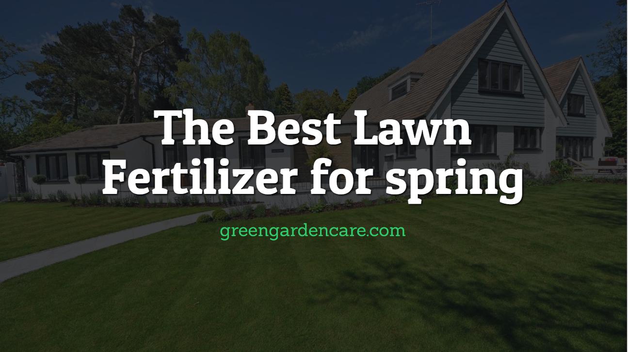 Best Lawn Fertilizer >> The Best Lawn Fertilizer For Spring Green Garden Lawn